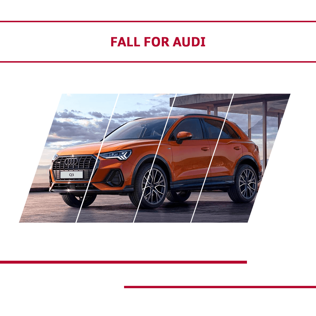 Fall For of Audi Event